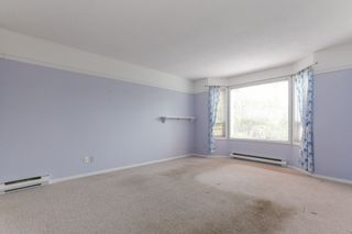 Photo 10: 5544 TIDEWATER Bay in Delta: Neilsen Grove House for sale (Ladner)  : MLS®# R2450338