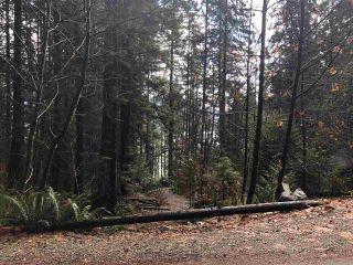 Photo 7: 303 SASAMAT Lane in North Vancouver: Woodlands-Sunshine-Cascade Land for sale : MLS®# R2331037