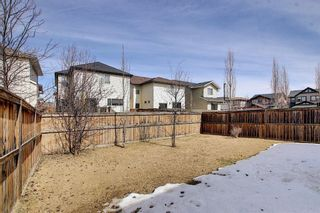 Photo 21: 192 Reunion Close NW: Airdrie Detached for sale : MLS®# A1089777