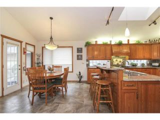 Photo 11: 322 Lakeside Green Place: Chestermere House for sale : MLS®# C4001857