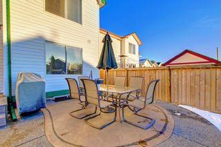Photo 34: 351 MT APEX Green SE in Calgary: McKenzie Lake Detached for sale : MLS®# C4272409