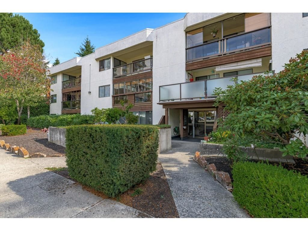 Main Photo: 206 1526 GEORGE STREET: White Rock Condo for sale (South Surrey White Rock)  : MLS®# R2618182