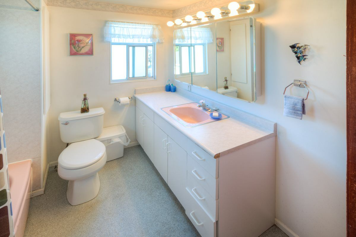 """Photo 14: Photos: 1728 DUBLIN Street in New Westminster: West End NW House for sale in """"WEST END"""" : MLS®# R2053372"""