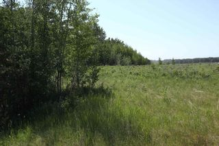 Photo 12: TWP 494 RR 42: Rural Leduc County Rural Land/Vacant Lot for sale : MLS®# E4252228