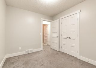 Photo 24: 240 MT ABERDEEN Close SE in Calgary: McKenzie Lake Detached for sale : MLS®# A1103034