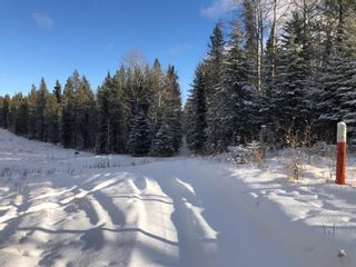 Photo 3: On Range road 8-0  , Section 19, 36, 7, W5: Rural Clearwater County Land for lease : MLS®# A1055389