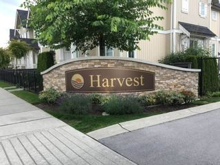 """Photo 25: 69 31032 WESTRIDGE Place in Abbotsford: Abbotsford West Townhouse for sale in """"Harvest"""" : MLS®# R2084069"""