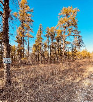 Photo 2: Over one acre lots in Hudson Bay: Lot/Land for sale : MLS®# SK850480