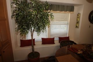 Photo 10: CARLSBAD WEST Manufactured Home for sale : 3 bedrooms : 7108 San Luis #130 in Carlsbad