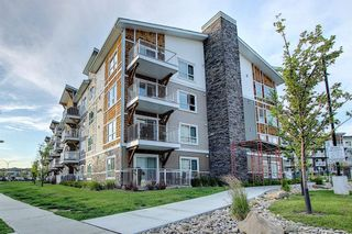 Photo 33: 3205 302 Skyview Ranch Drive NE in Calgary: Skyview Ranch Apartment for sale : MLS®# A1077085