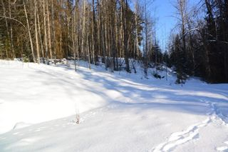 Photo 16: LOT A W 16 Highway in Smithers: Smithers - Town Land for sale (Smithers And Area (Zone 54))  : MLS®# R2533470