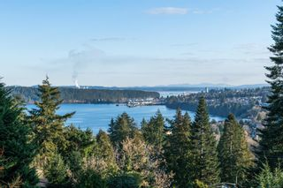 Photo 53: 3273 Telescope Terr in : Na Departure Bay House for sale (Nanaimo)  : MLS®# 865981