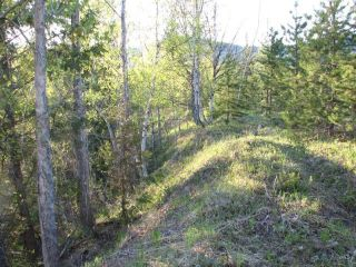 Photo 4: SW 1/4 DL 1680 ROAD 2A FSR in No City Value: Out of Town Land for sale : MLS®# R2603759