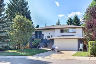 Main Photo: 22 Silvergrove Mews NW in Calgary: Silver Springs Detached for sale : MLS®# A1139265