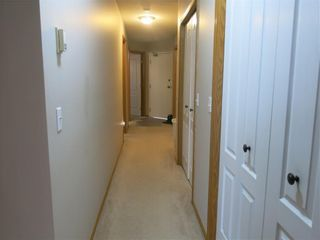 Photo 13: 101 1723 35 Street SE in Calgary: Albert Park/Radisson Heights Apartment for sale : MLS®# A1111209