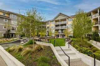 """Photo 27: 407 5020 221A Street in Langley: Murrayville Condo for sale in """"Murrayville house"""" : MLS®# R2572110"""