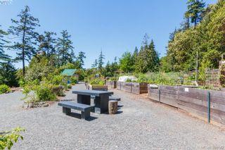Photo 41: 101 Uganda Ave in VICTORIA: Es Kinsmen Park House for sale (Esquimalt)  : MLS®# 796461
