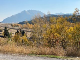 Photo 7: 8330 18 Avenue in Coleman: NONE Land for sale : MLS®# A1084355