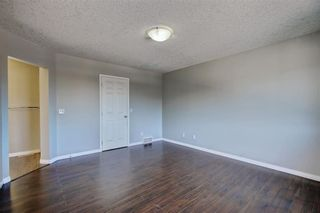 Photo 17: 81 SADDLECREST Park NE in Calgary: Saddle Ridge Detached for sale : MLS®# C4290760