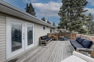 Photo 39: 4520 Namaka Crescent NW in Calgary: North Haven Detached for sale : MLS®# A1147081