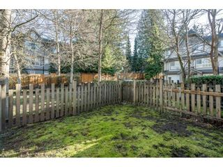 """Photo 28: 24 12738 66 Avenue in Surrey: West Newton Townhouse for sale in """"Starwood"""" : MLS®# R2531182"""