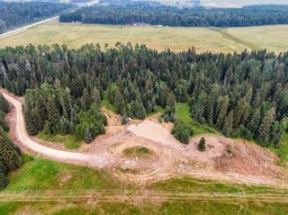 Photo 19: 31339 Rge Rd 55: Rural Mountain View County Land for sale : MLS®# A1136736
