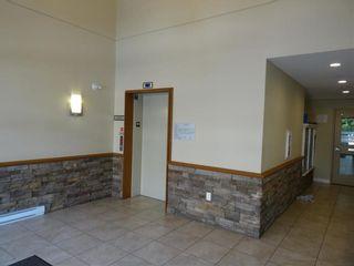 Photo 10: 205 12565 190A Street in CEDAR DOWNS: Home for sale : MLS®# r2207991