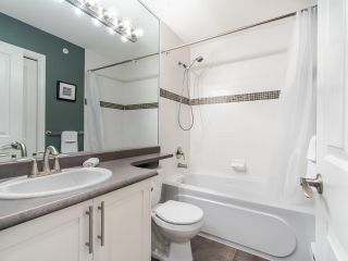 """Photo 16: 150 20449 66 Avenue in Langley: Willoughby Heights Townhouse for sale in """"NATURES LANDING"""" : MLS®# R2422981"""