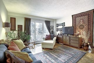 Photo 8: 303 215 25 Avenue SW in Calgary: Mission Apartment for sale : MLS®# A1063932