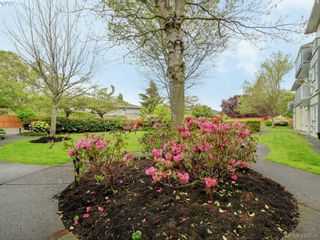 Photo 23: 209 400 Dupplin Rd in VICTORIA: SW Rudd Park Condo for sale (Saanich West)  : MLS®# 814183