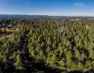 Photo 10: Lot G Dohm Rd in : CV Merville Black Creek Land for sale (Comox Valley)  : MLS®# 854437