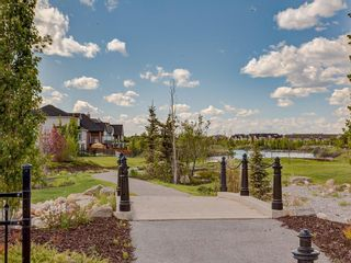 Photo 44: 976 COPPERFIELD Boulevard SE in Calgary: Copperfield Detached for sale : MLS®# C4303066