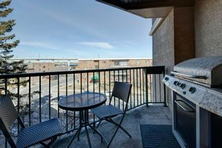 Photo 27: 303 1833 11 Avenue SW in Calgary: Sunalta Apartment for sale : MLS®# A1083577
