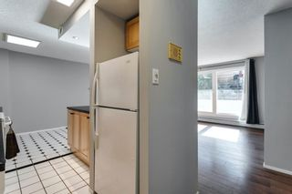 Photo 3: 307 903 19 Avenue SW in Calgary: Lower Mount Royal Apartment for sale : MLS®# A1152500