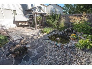 Photo 45: 84 CHAPALA Square SE in Calgary: Chaparral House for sale : MLS®# C4074127