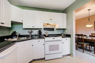 """Photo 2: 23 3476 COAST MERIDIAN Road in Port Coquitlam: Lincoln Park PQ Townhouse for sale in """"Laurier Mews"""" : MLS®# R2345938"""