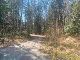 Photo 7: 1815 HARMAN Road: Roberts Creek Land for sale (Sunshine Coast)  : MLS®# R2614266