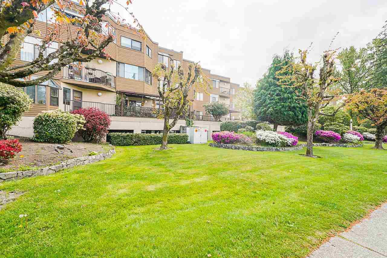 """Main Photo: 32 11900 228 Street in Maple Ridge: East Central Condo for sale in """"MOONLITE GROVE"""" : MLS®# R2576690"""