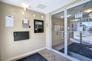 Photo 34: 2403 403 Mackenzie Way SW: Airdrie Apartment for sale : MLS®# A1153316