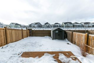 Photo 24: 3400 WEIDLE Way in Edmonton: Zone 53 House Half Duplex for sale : MLS®# E4229486
