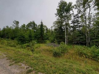 Photo 2: Lot 12 Fundy Bay Drive in Victoria Harbour: 404-Kings County Vacant Land for sale (Annapolis Valley)  : MLS®# 202119692