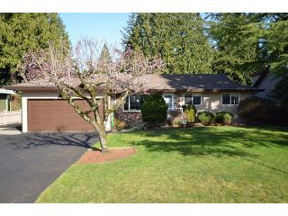 Photo 1: 19815 36A AV in Langley: Brookswood Langley Home for sale ()  : MLS®# F1434172