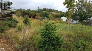 Photo 2: 8 & 10 Robs Road in Paradise: Vacant Land for sale : MLS®# 1229482