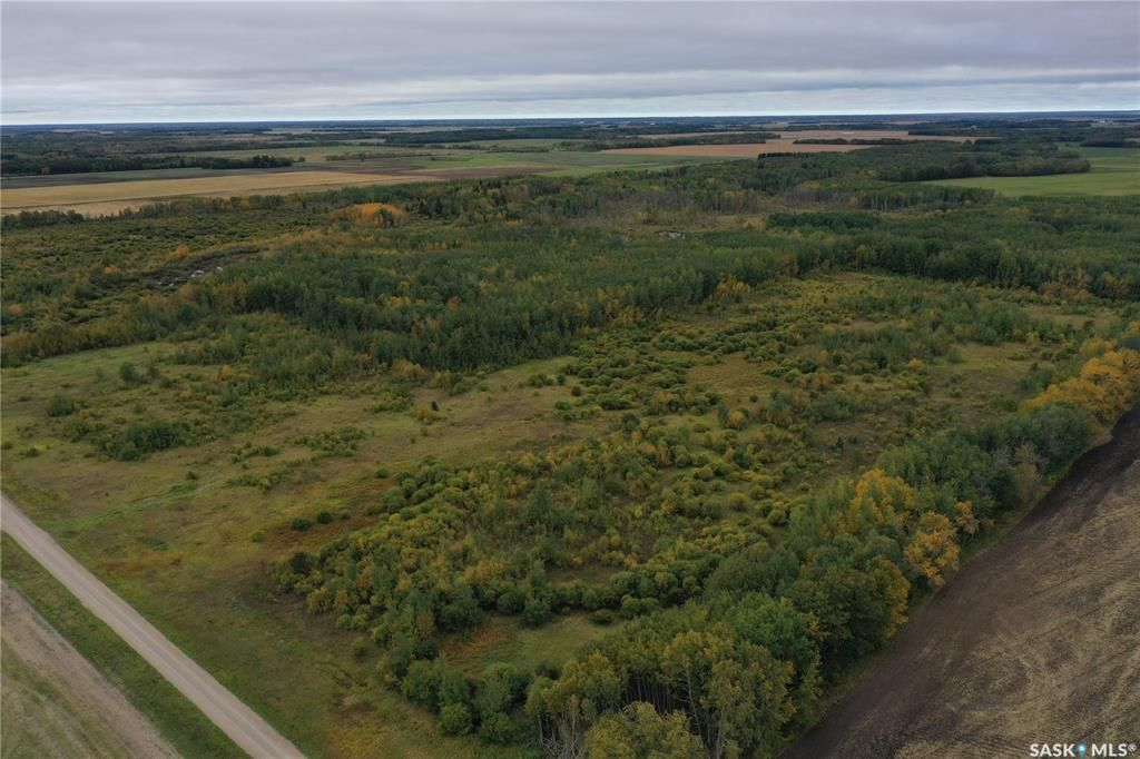 Main Photo: Evans land in Torch River: Lot/Land for sale (Torch River Rm No. 488)  : MLS®# SK871207