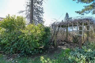 Photo 43: 4643 Macintyre Ave in : CV Courtenay East House for sale (Comox Valley)  : MLS®# 872744
