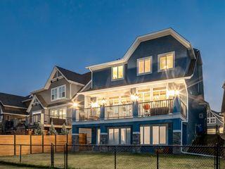 Photo 42: 250 MAHOGANY Place SE in Calgary: Mahogany Detached for sale : MLS®# A1069286