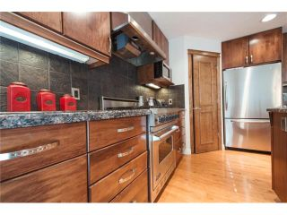 Photo 17: 84 CHAPALA Square SE in Calgary: Chaparral House for sale : MLS®# C4074127