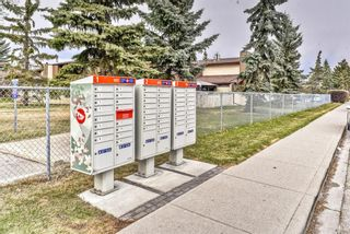 Photo 28: 1101 53A Street SE in Calgary: Penbrooke Meadows Row/Townhouse for sale : MLS®# A1093986