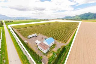 Photo 13: 4081 DIXON Road: Agri-Business for sale in Abbotsford: MLS®# C8038207
