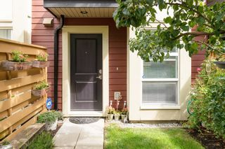 """Photo 47: 25 19477 72A Avenue in Surrey: Clayton Townhouse for sale in """"Sun at 72"""" (Cloverdale)  : MLS®# R2094312"""